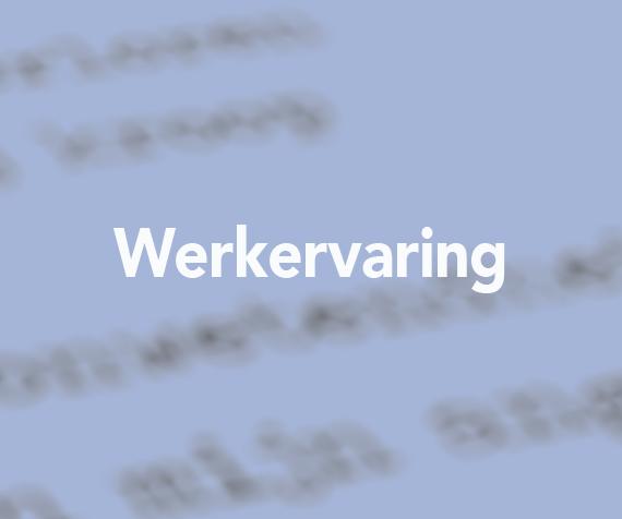 Werkervaring